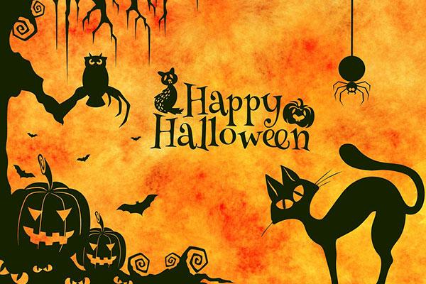 جشن هالووین از نگاه طراحان معماری