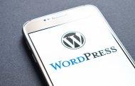 نرم افزار طراحی سایت وردپرس چیست؟