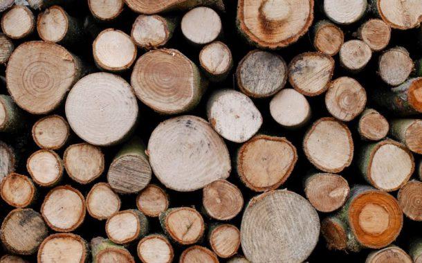 کاربرد تخته ملچ در صنایع متنوع چوبی