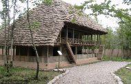 خانه های چوبی دو طبقه