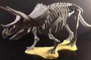 7 مدل سه بعدی رایگان ماکت دایناسور قابل ساخت با چاپگر سه بعدی خانگی